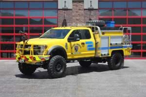 type-6-brush-trucks-for-sale-01
