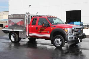 1317 Emery County - Rebel Type 6 Brush Truck